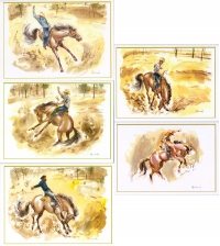 Bucking horses Greeting Cards