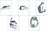 Cat Series 1 Greeting Cards